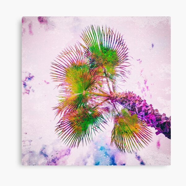 Colorful palm tree on pink and blue Canvas Print
