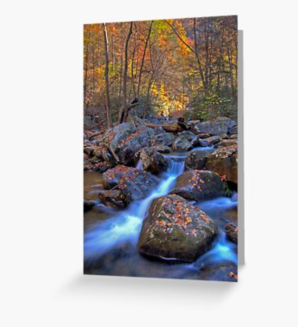 South Mountains State Park, North Carolina Greeting Card