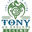 Legend T-shirt - Legend Shirt - Legend Tee - TONY An Endless Legend by wantneedlove