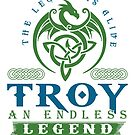 Legend T-shirt - Legend Shirt - Legend Tee - TROY An Endless Legend by wantneedlove