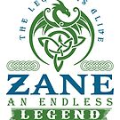 Legend T-shirt - Legend Shirt - Legend Tee - ZANE An Endless Legend by wantneedlove