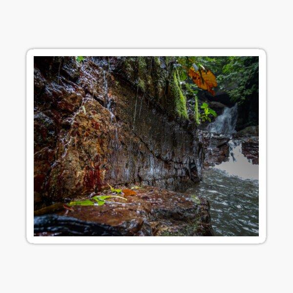 Catarata Ananda (Ananda Waterfall) Sticker