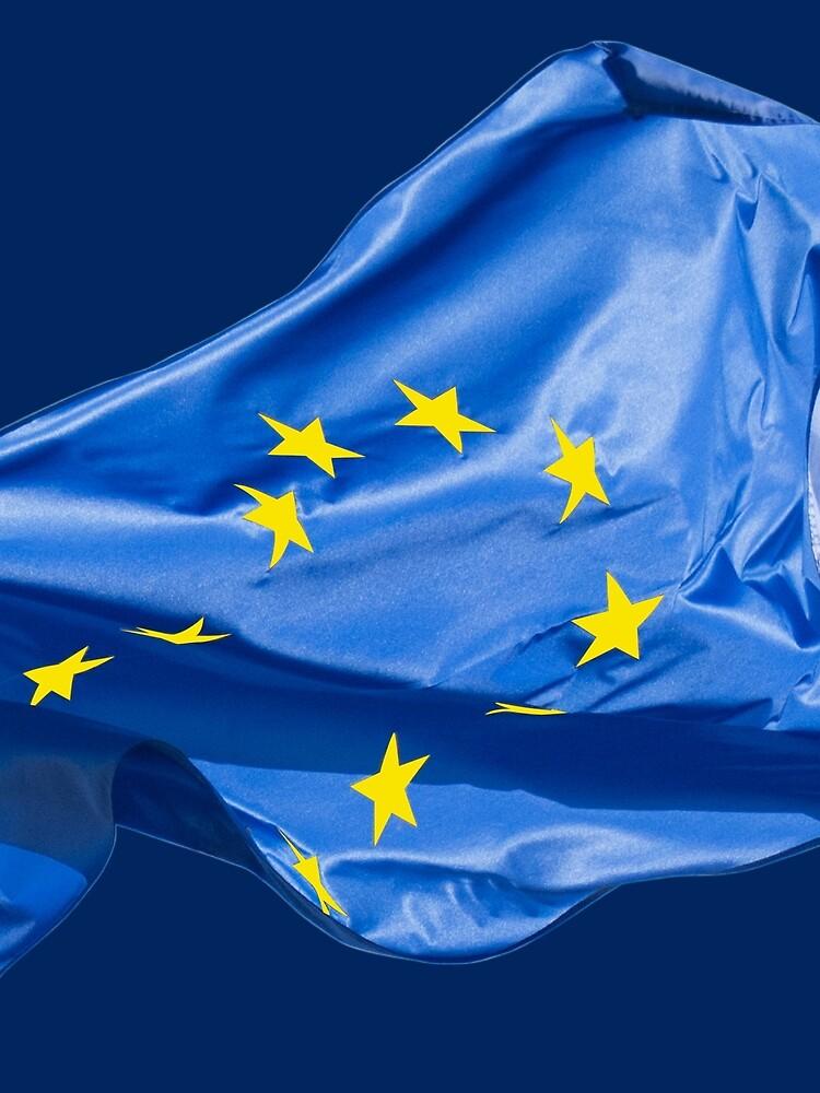 European flag by igorsin