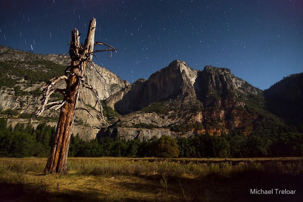 Yosemite Stars by Michael Treloar