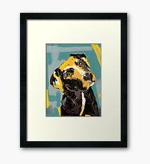 Dog Boris Framed Print