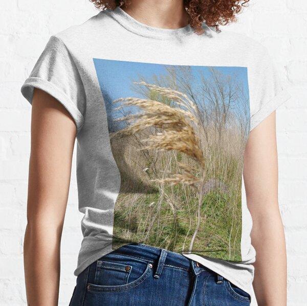 #Nature #field #grass #wheat #outdoors #agriculture #pasture #farm #summer #straw #crop #landscape #corn #vertical #colorimage #ruralscene #nopeople #cerealplant #nonurbanscene #day #phragmites Classic T-Shirt