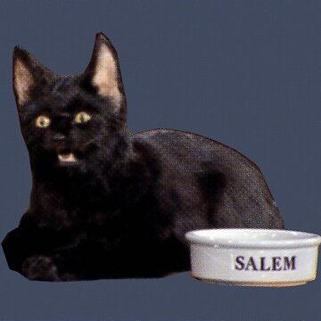 Salem | Steel Blue by soundlesswaves