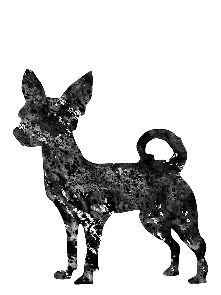 Chihuahua by erzebetth