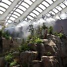 Biodome in Montreal by Equinox