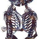 Love bones by illustrart