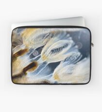 Bryozoa Laptop Sleeve