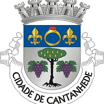 Coat of Arms of Cantanhede, Portugal by PZAndrews