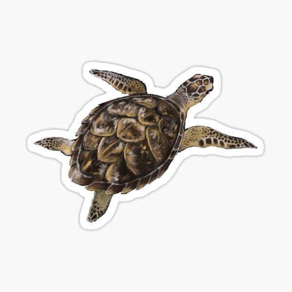 Hawksbill Turtle Sticker