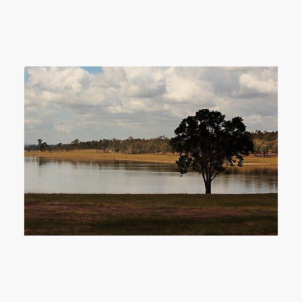 Lone tree at Joh Bjelke-Petersen Dam  Photographic Print
