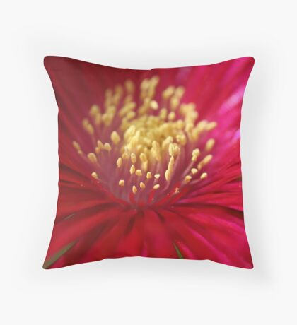 Red or Pink Throw Pillow