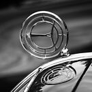 Steyr Hood Ornament by dlhedberg