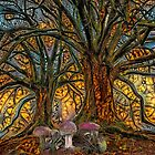 the Fairy Forest by blacknight
