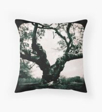 The things I've seen... Throw Pillow
