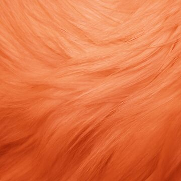 Avenue Q: Orange Fur by broadway-island