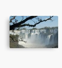 Iguazu Canvas Print