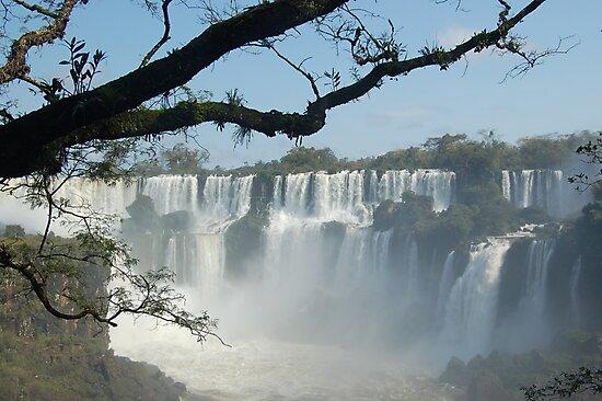 Iguazu by Timana