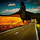 Road Trip by Alexandru C.