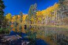 North Fork Bishop Creek by photosbyflood