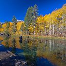 North Fork Bishop Creek by photosbyflood