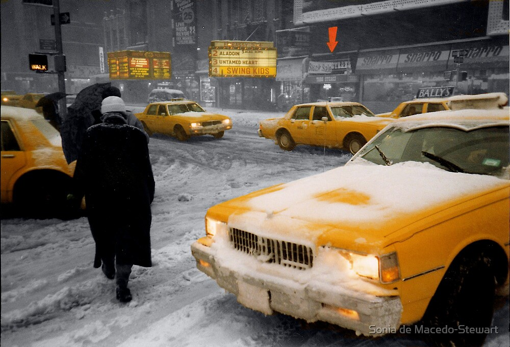 New York Winter '93 by Sonia de Macedo-Stewart