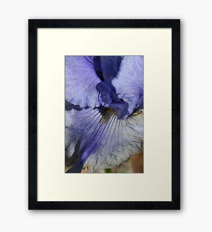 Blue Tone Framed Print
