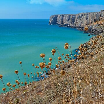 Sagres Portugal by jsebouvi