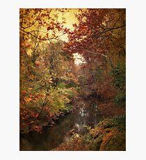 Overlook Photographic Print
