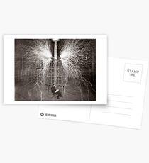 Tesla In Study Postcards