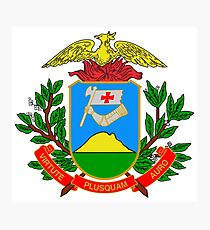 Coat of arms of Mato Grosso Photographic Print