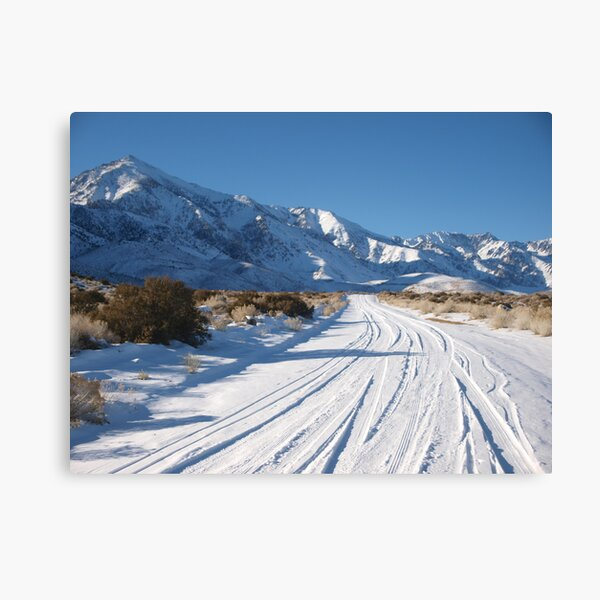 Desert Snow December 2008 Canvas Print