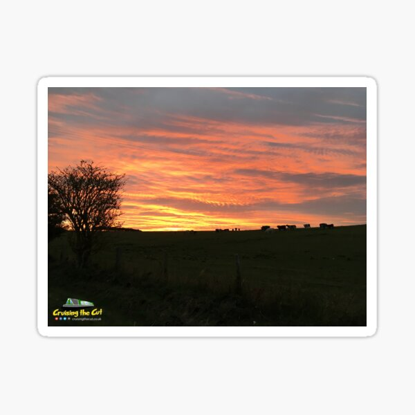 Sunset at the Wendover Arm of the Grand Union canal Sticker