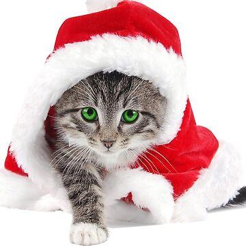 Christmascat by DrTigrou