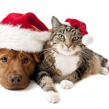 Christmas dog and cat by DrTigrou