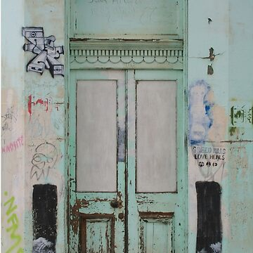 Graffiti Door by estar