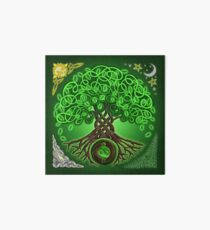 Lámina de exposición Circle Celtic Tree of Life
