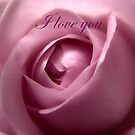 Adorable Soft Pink Rose I Love You by hurmerinta