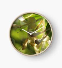 Honeysuckle Clock