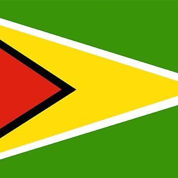 Flag of Guyana by virginia50