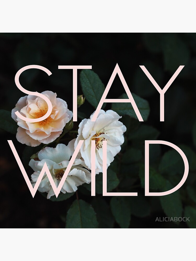 Stay Wild (Rose) by ALICIABOCK