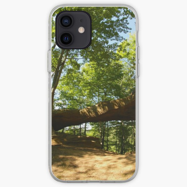 Princess Arch in Shadows iPhone Soft Case