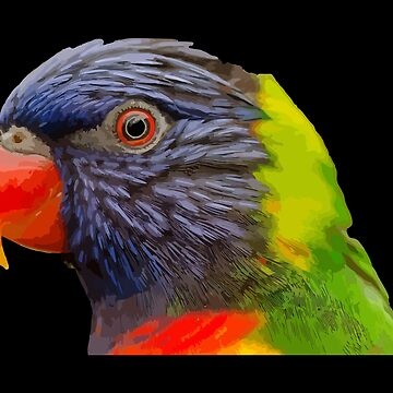 Colorful Parrot Bird by desexperiencia