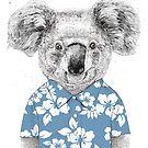 Summer koala (blue) by soltib