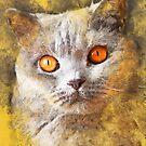 Cat Smokey #cat #kitty by JBJart