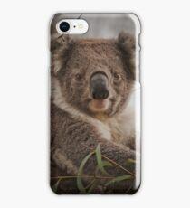 Koala !! iPhone Case/Skin