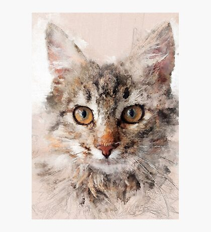 Cat Cinder #cat #kitty Photographic Print